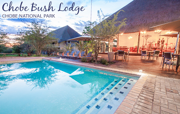 CHOBE BUSH LODGE, KASANE