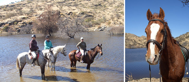 Equitrails Namibia - Horse Riding Tours - Windhoek