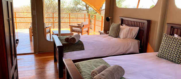 zingela game reserve, nature reserve, tolwe, accommodation in tolwe, limpopo, alldays, self catering, game lodge, bed and breakfast, game drives, volunteering